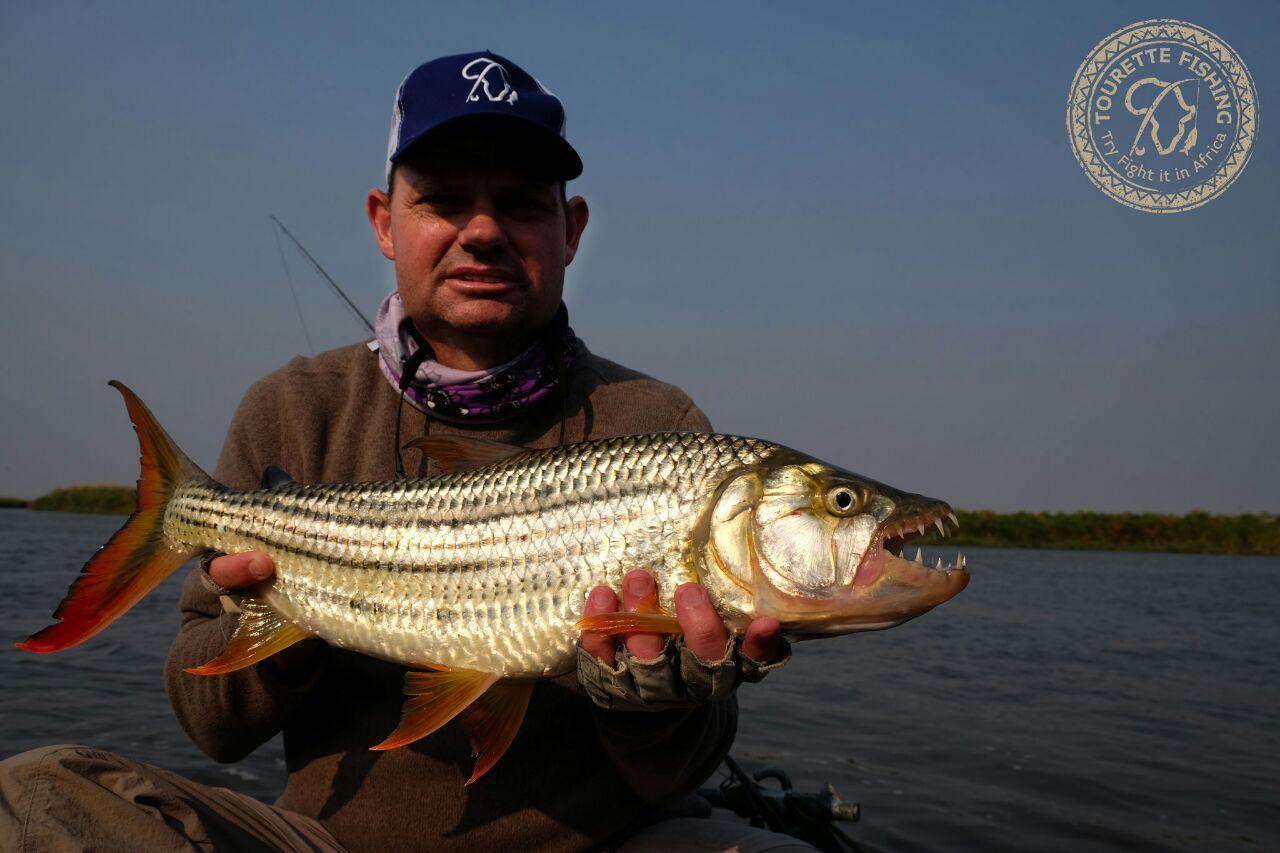 okavango-barbel-run-tigerfish-season-2016-week-3-tourette-fishing-blog-angler