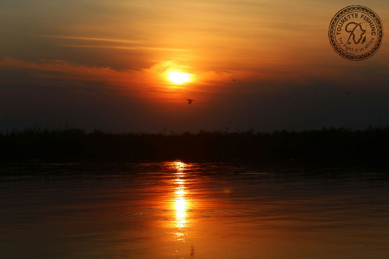 okavango-barbel-run-tigerfish-season-2016-week-3-tourette-fishing-blog-okavango-river-sunset