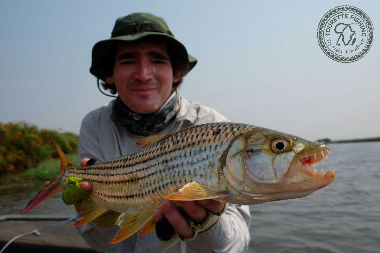 okavango-barbel-run-tigerfish-season-2016-week-3-tourette-fishing-blog-vossie