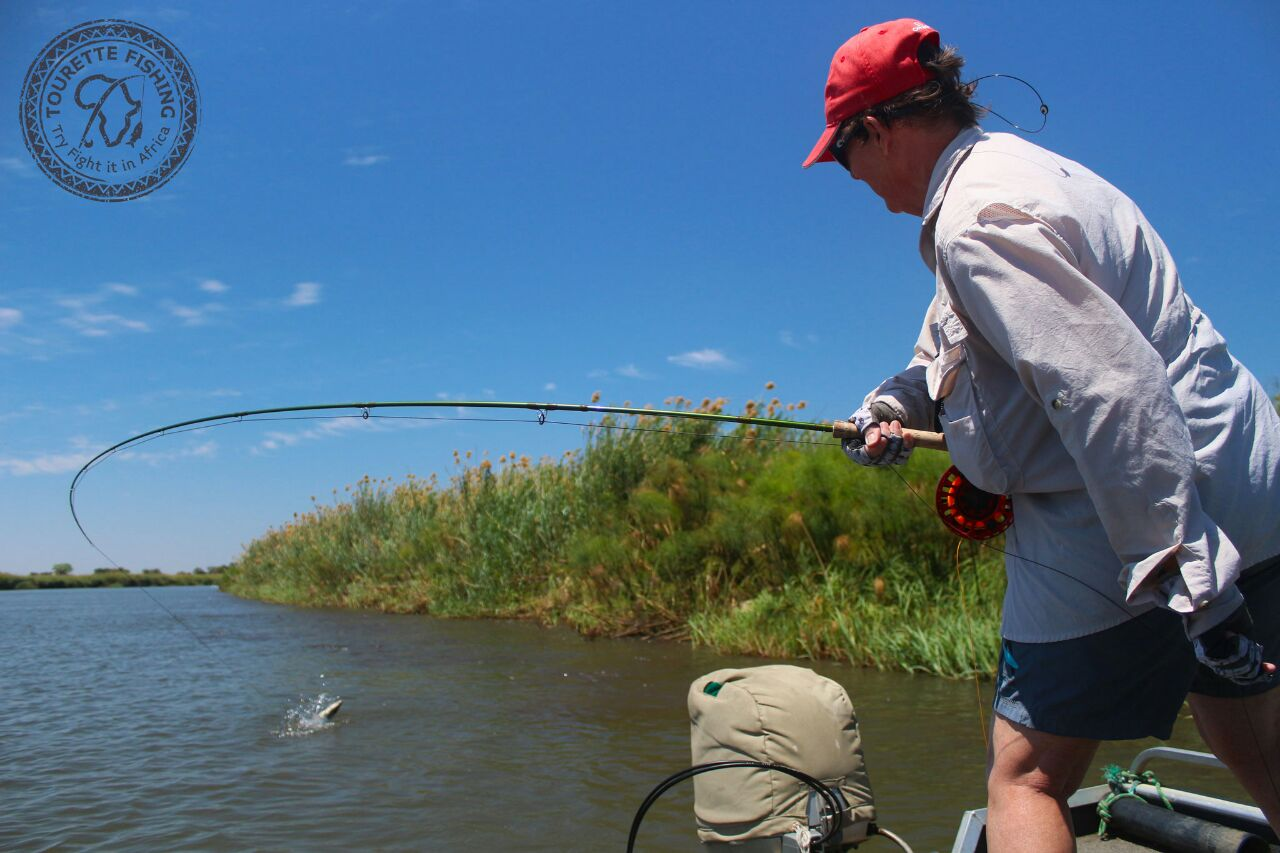 okavango-barbel-run-tigerfish-season-2016-group-4-tourette-fishing-blog-angler
