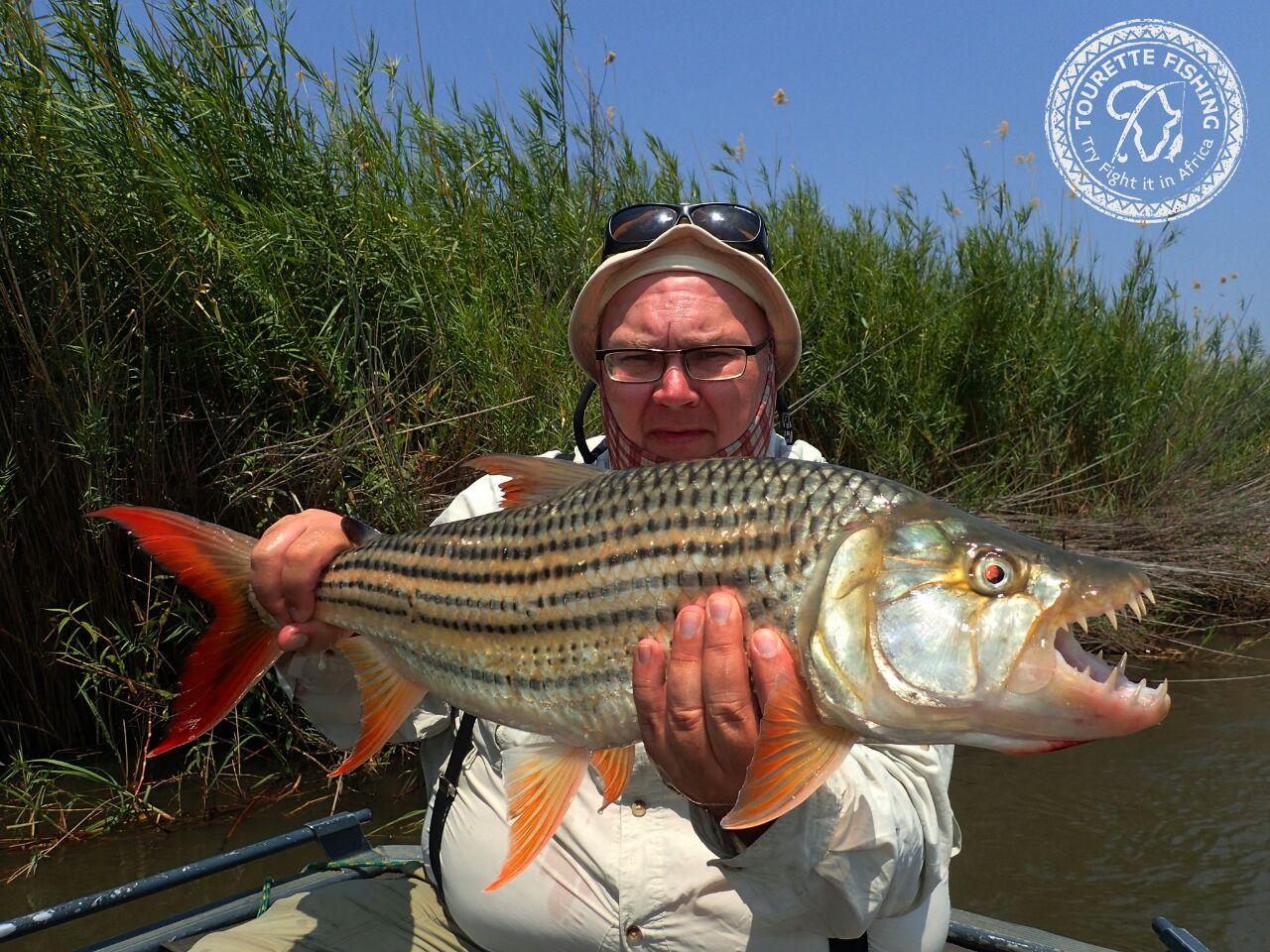 okavango-barbel-run-tigerfish-season-2016-grp-5-tourette-fishing-blog-fish