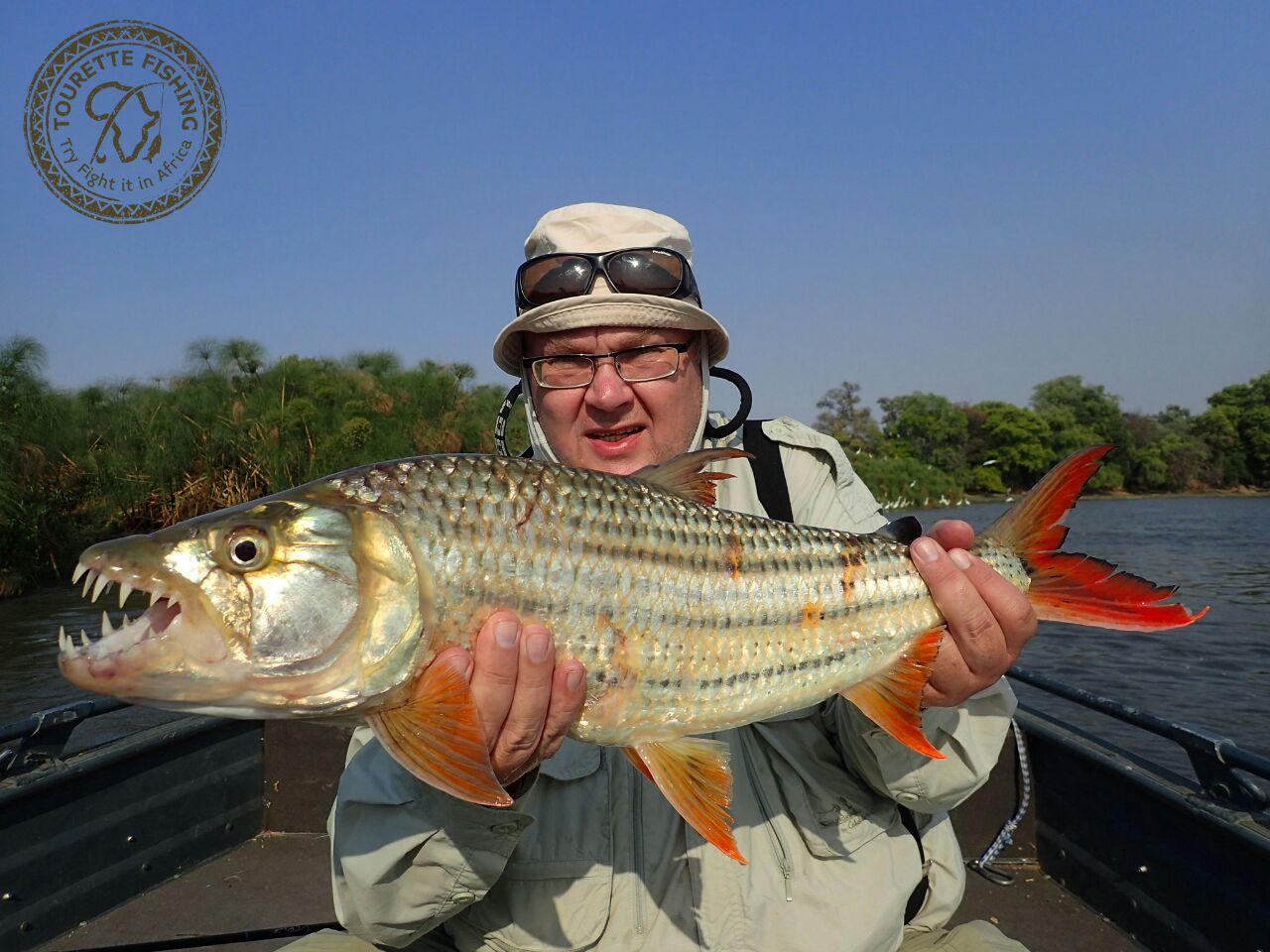 okavango-barbel-run-tigerfish-season-2016-grp-5-tourette-fishing-blog-jan