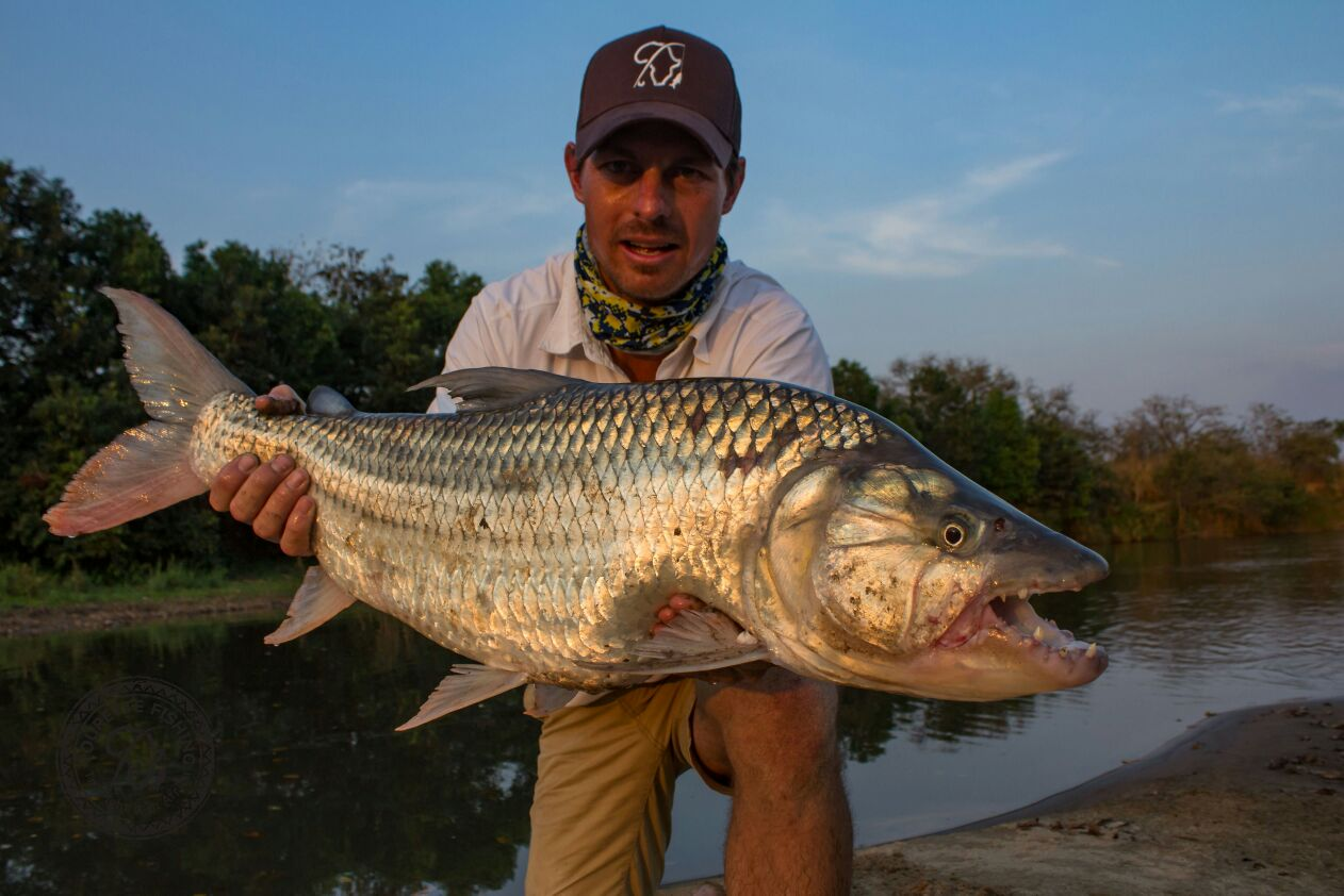 tanzania-tigerfish-season-2016-week-2-tourette-fishing-blog-cobus