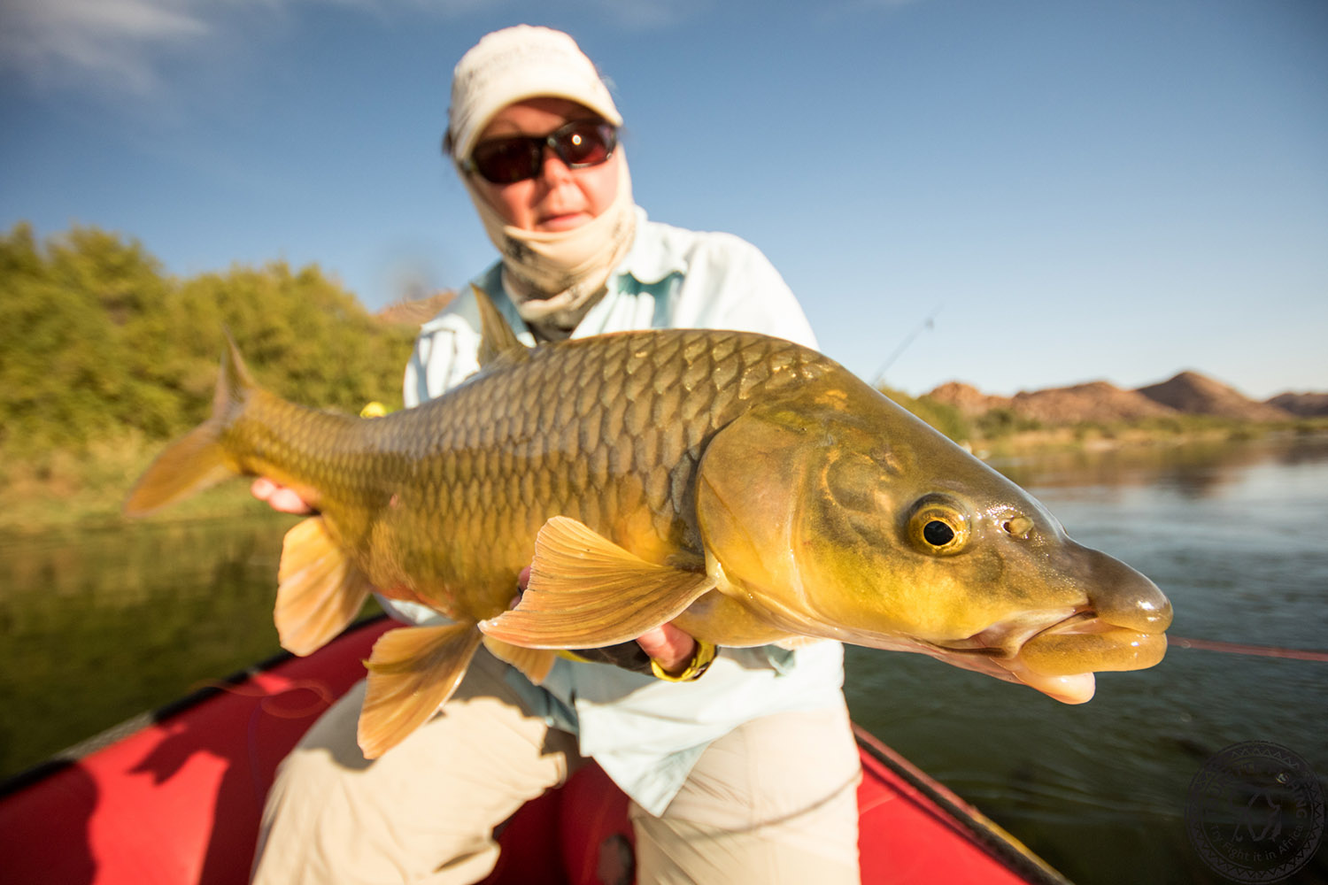 south-africa-kalahari-largemouth-yellowfish-expeditions-tours-tourette-fishing-orange-river